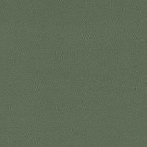 17000-261 – BASIL