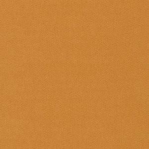 17000-265 – AMBER