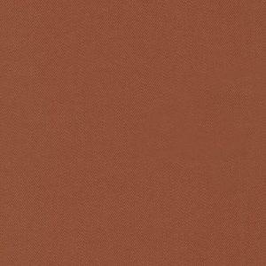 17000-296 – CINNAMON