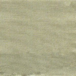 DHER1503-LIMESTONE