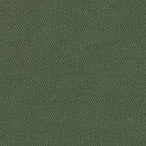 25000-43 – Evergreen