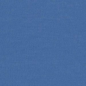 25000-58 – Hydrangea